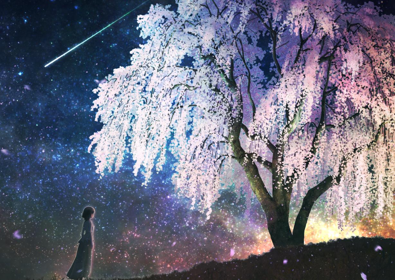 aliasing cherry_blossoms flowers kupe original scenic short_hair sky stars tree
