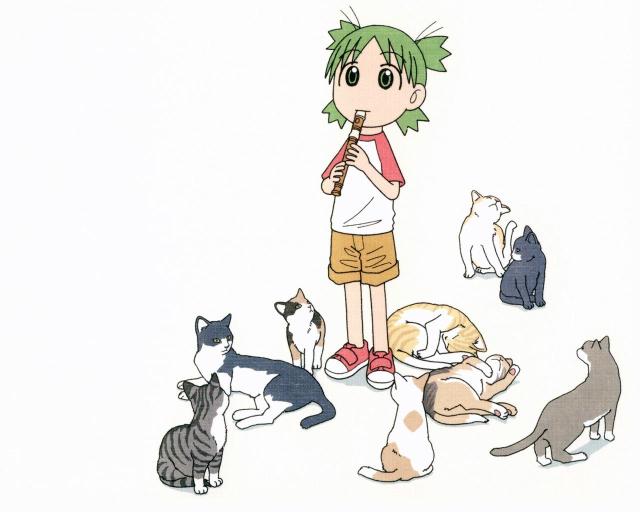 animal azuma_kiyohiko cat koiwai_yotsuba music white yotsubato!