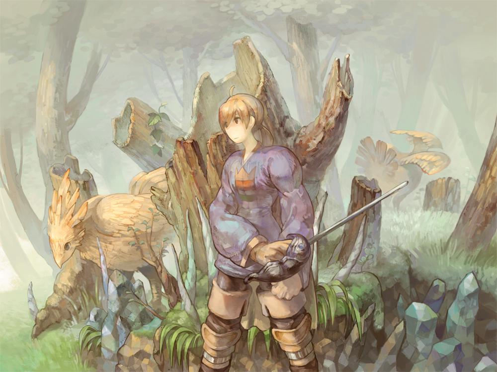 All Male Black Eyes Blonde Hair Chocobo Final Fantasy