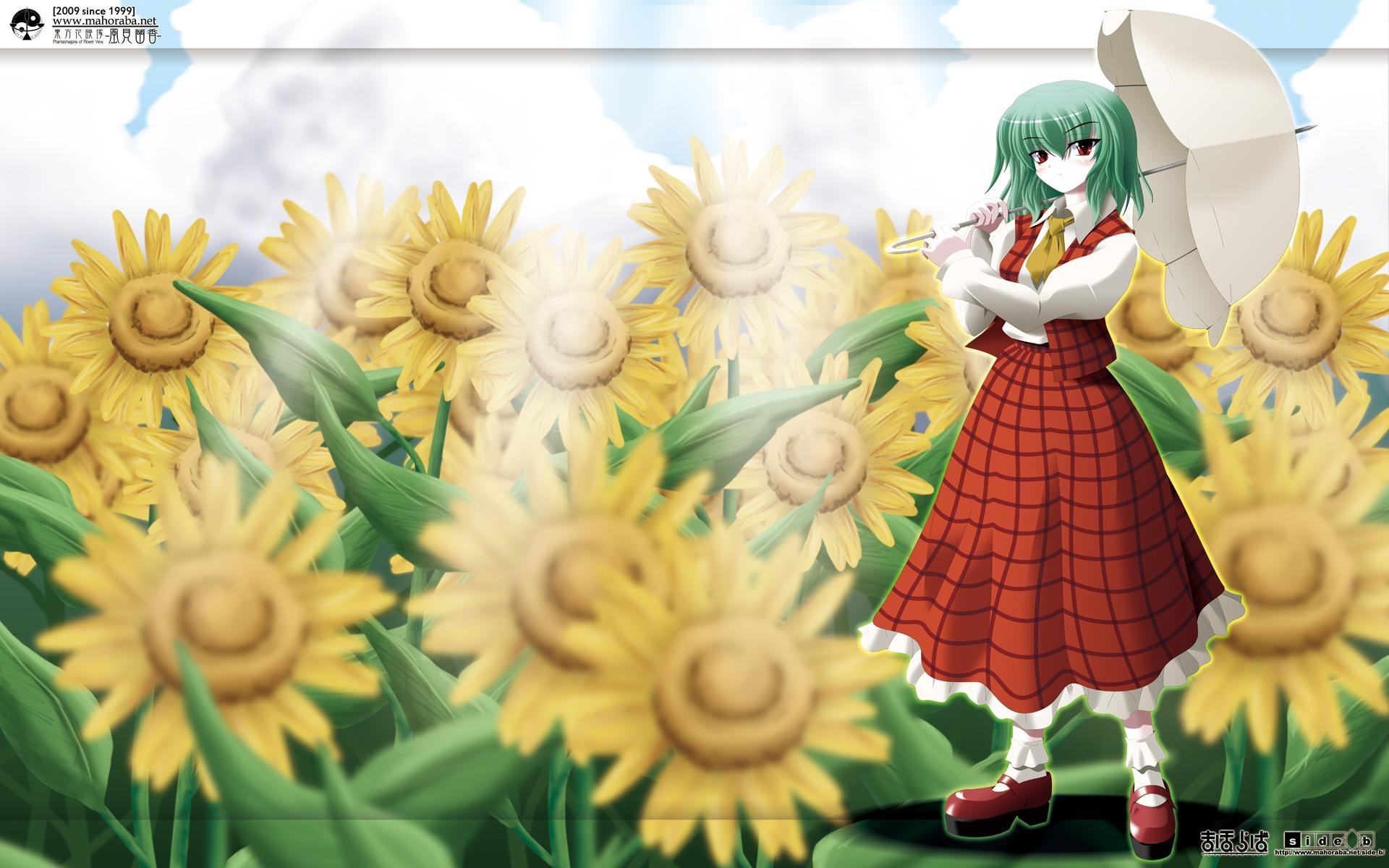 flowers green_hair kazami_yuuka red_eyes side_b sunflower touhou umbrella