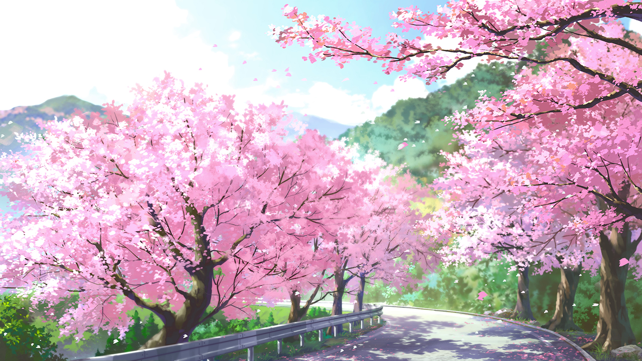 cherry_blossoms dao_dao landscape nobody original scenic spring tree