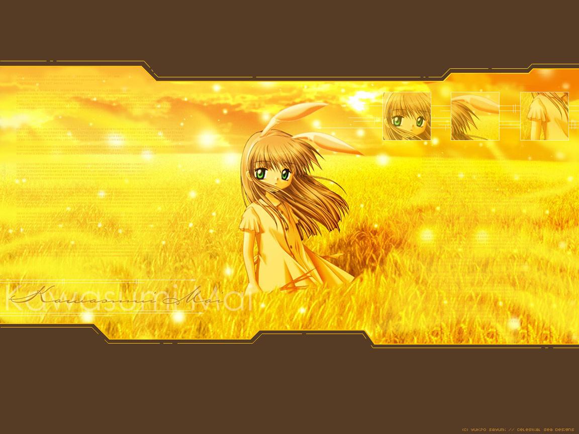 animal_ears bunny_ears bunnygirl kanon kawasumi_mai yellow