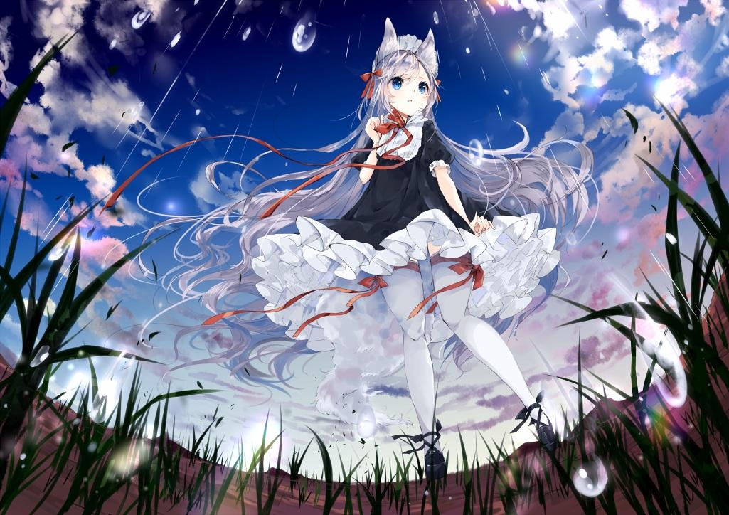 animal_ears blue_eyes clouds dress grass headdress lolita_fashion original rain ribbons sky thighhighs umi_no_mizu water white_hair