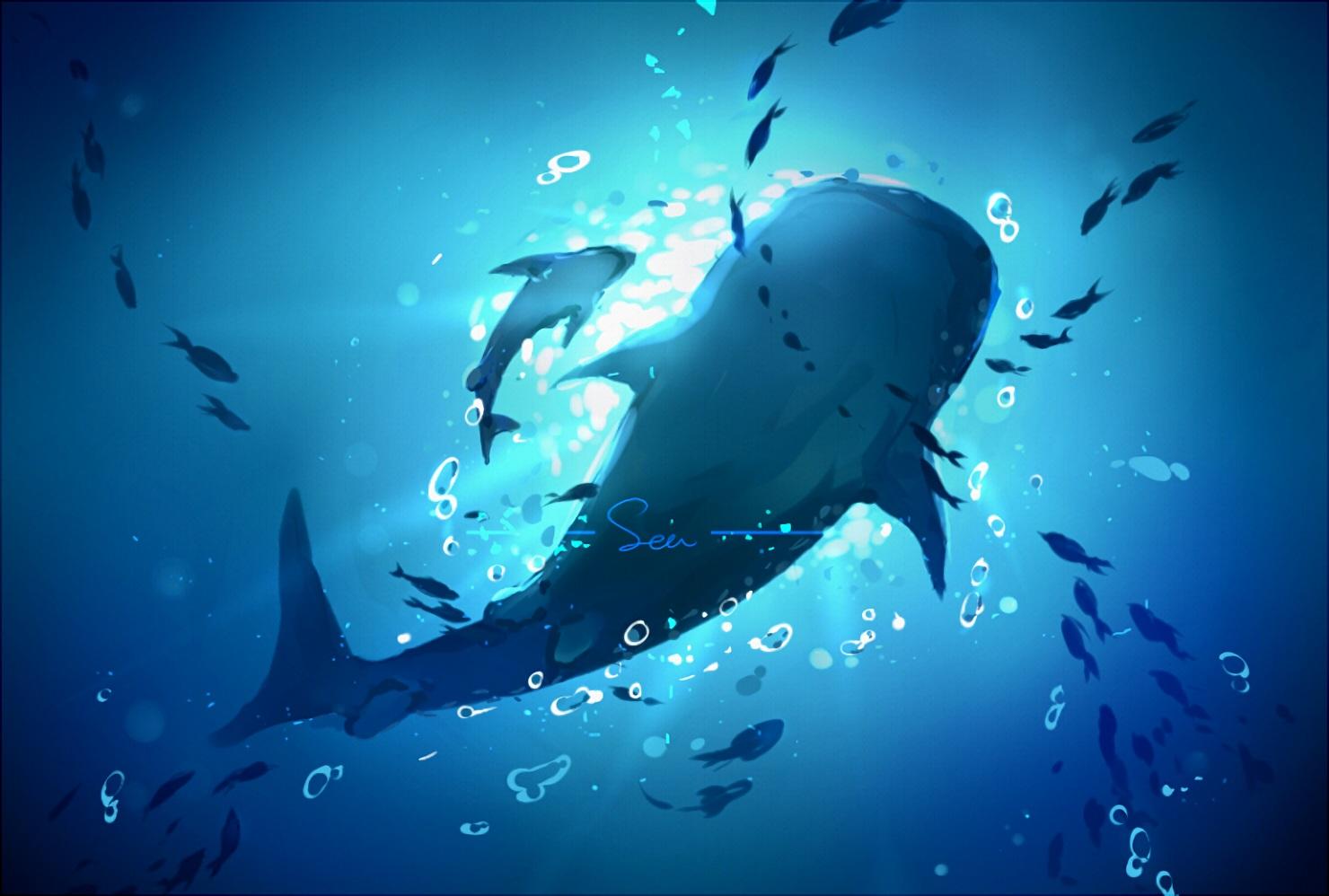 animal free! nobody scenic underwater waifu2x water yuzhi