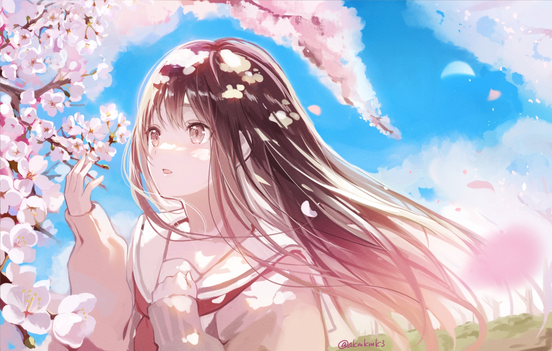 akamoku brown_eyes brown_hair cherry_blossoms close clouds flowers long_hair original petals school_uniform signed sky spring tree