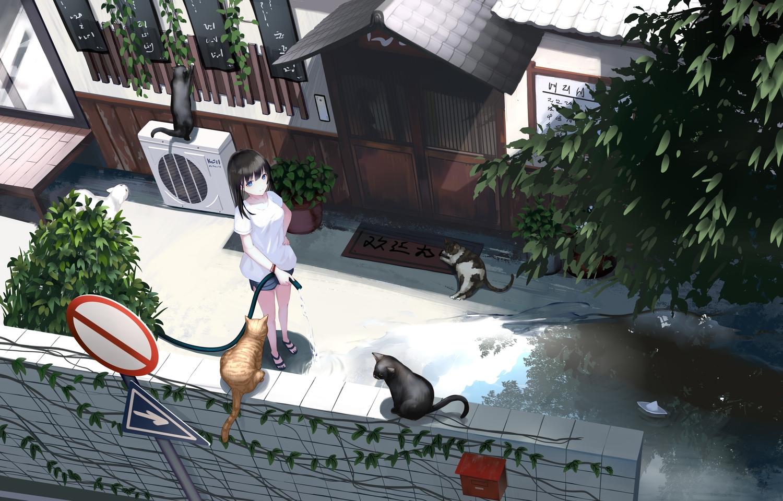 animal black_hair blue_eyes building cat .l.l long_hair original scenic shorts water