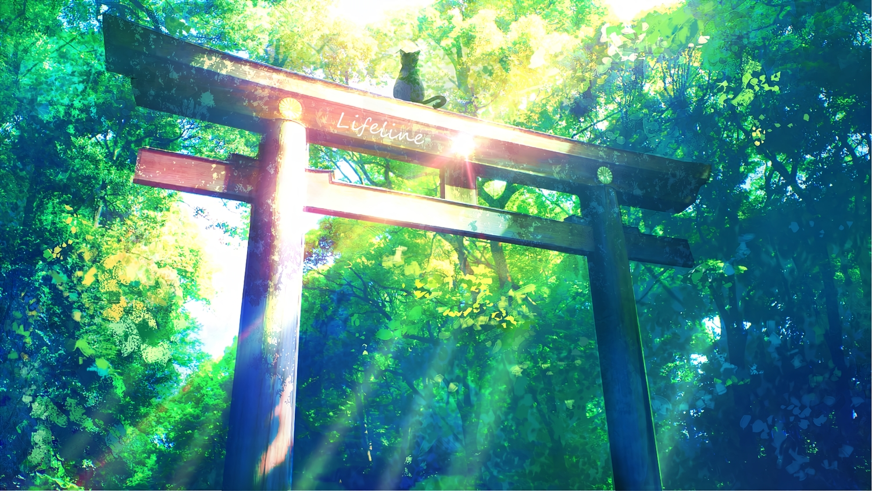 animal cat forest lifeline nobody original signed torii tree