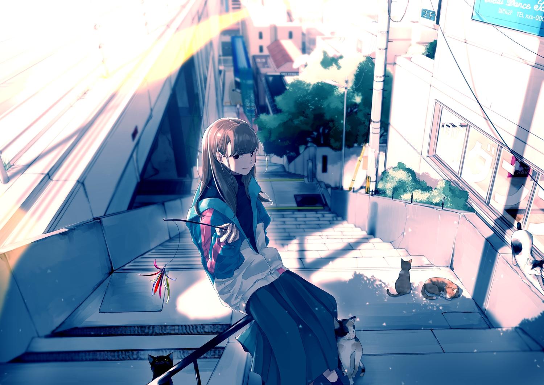 animal brown_hair cat long_hair maeda_mic original