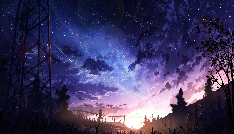 animal bird clouds forest original scenic signed silhouette sky skyrick9413 stars sunset tree