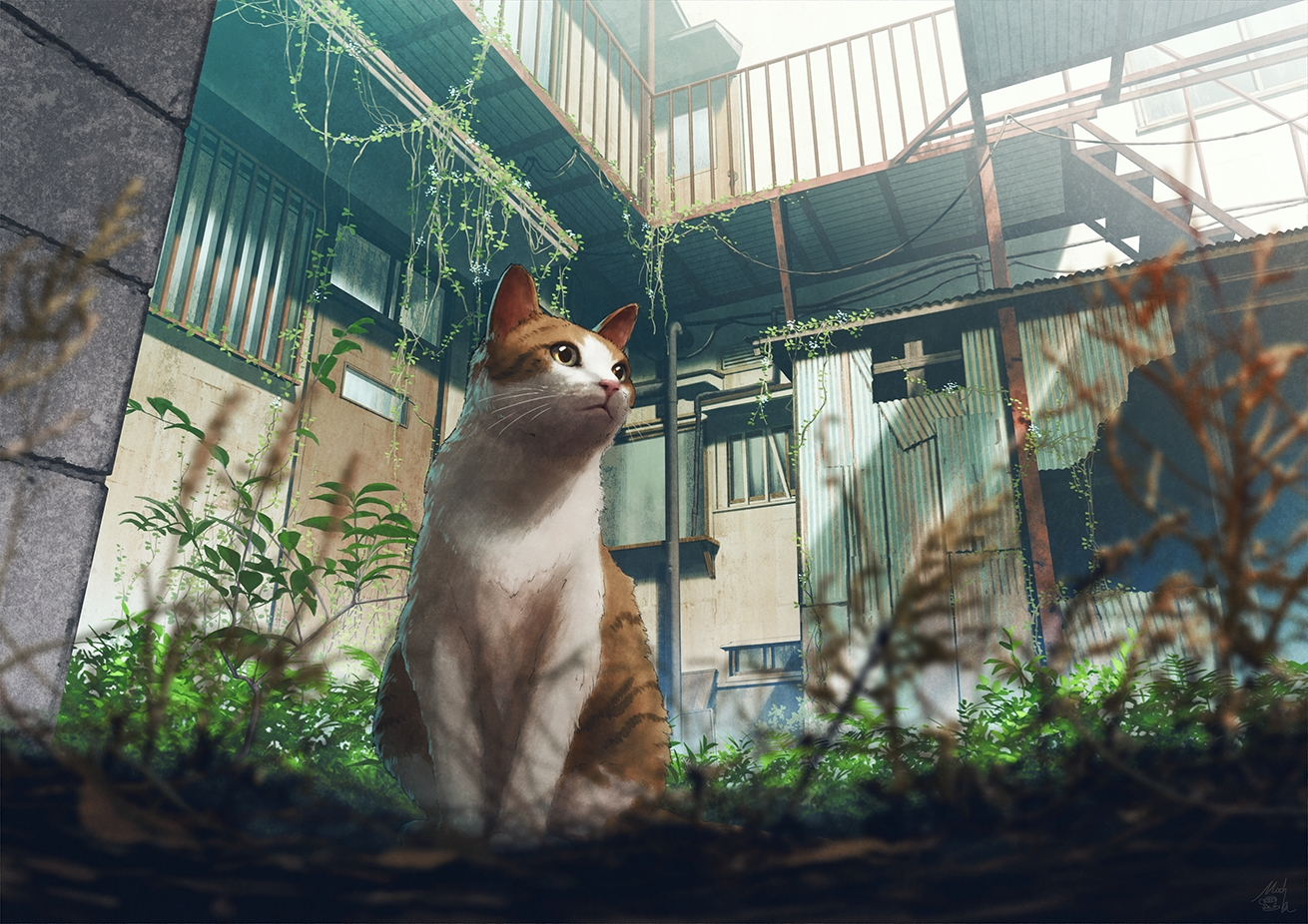 animal building cat close leaves mocha_(cotton) nobody original scenic signed stairs
