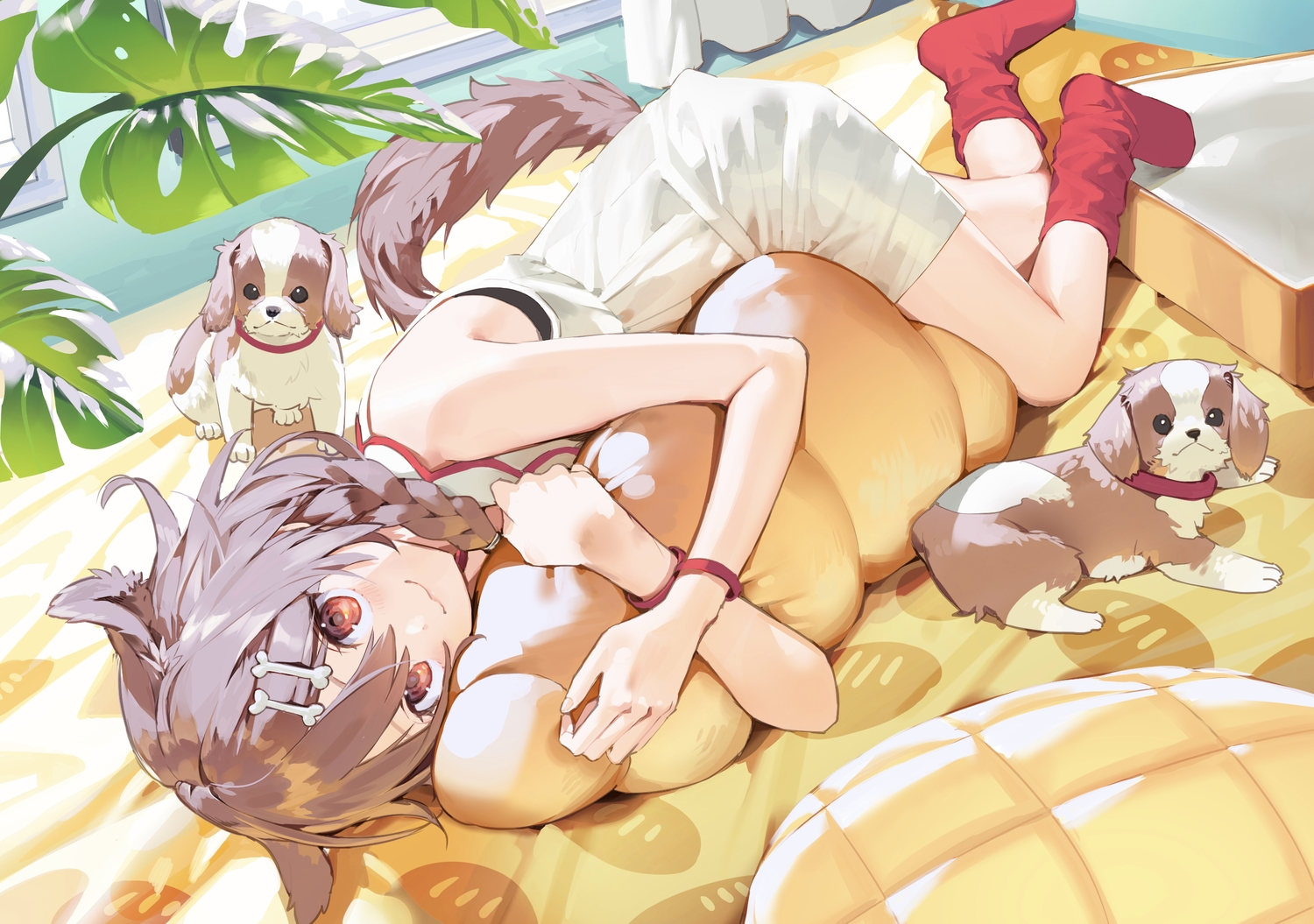 animal animal_ears bed braids brown_hair cat_smile dog doggirl dress hololive inugami_korone misoni_comi red_eyes socks summer_dress tail wristwear