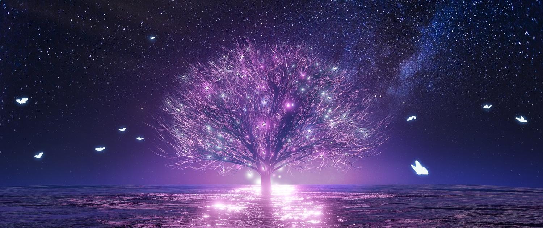 3d animal butterfly gan-viking night nobody original polychromatic scenic sky stars tree