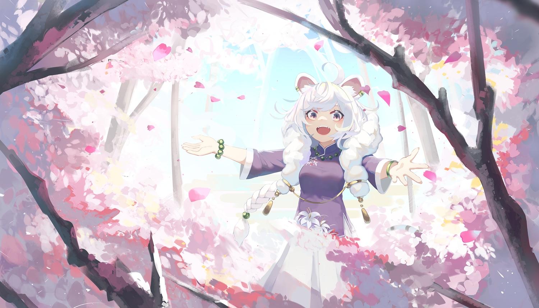 animal_ears braids cherry_blossoms chinese_clothes flowers long_hair natori_youkai original petals pink_eyes tree twintails white_hair wristwear